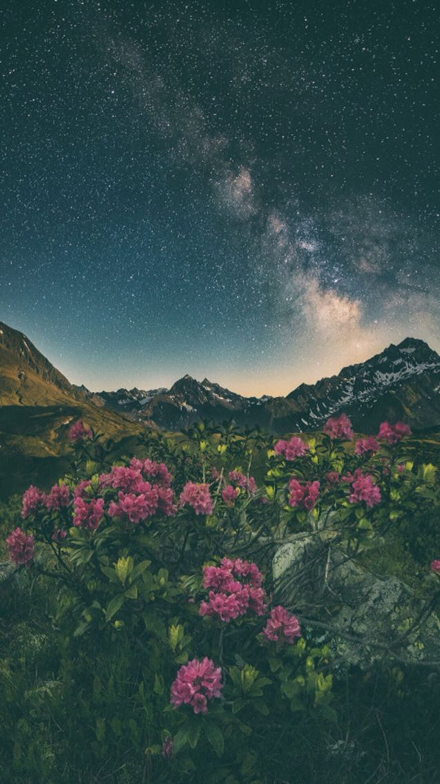Wallpaper iPhone 5#nature#wonderful