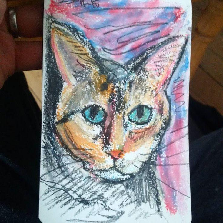 #cat #sketch in #oilpastels for @witchetymog  #drawing #drawmypet #catstagram #catsofinstagram #petstagram #petart #catlover #ilovecats #twitter