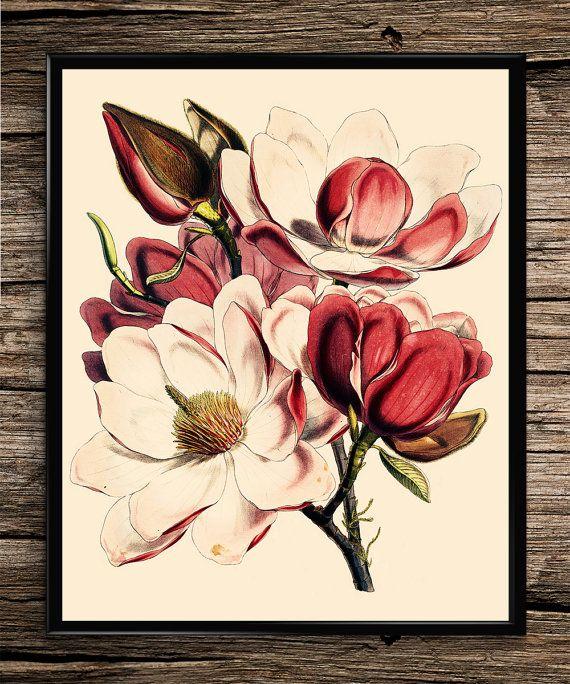 Pink Floral Bouquet | Vintage Prints | Botanical Prints | Home Decor | Office Decor | Printable Wall Art | Vintage Wall Art | Download |
