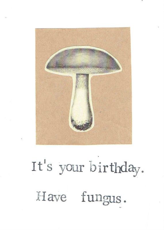Funny Mushroom Birthday Card, $3.00 Simple & silly.