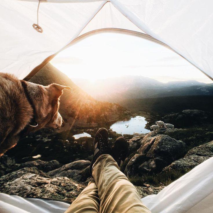 This weeks camping goals https://instagram.com/p/5U_VOQxSau/get