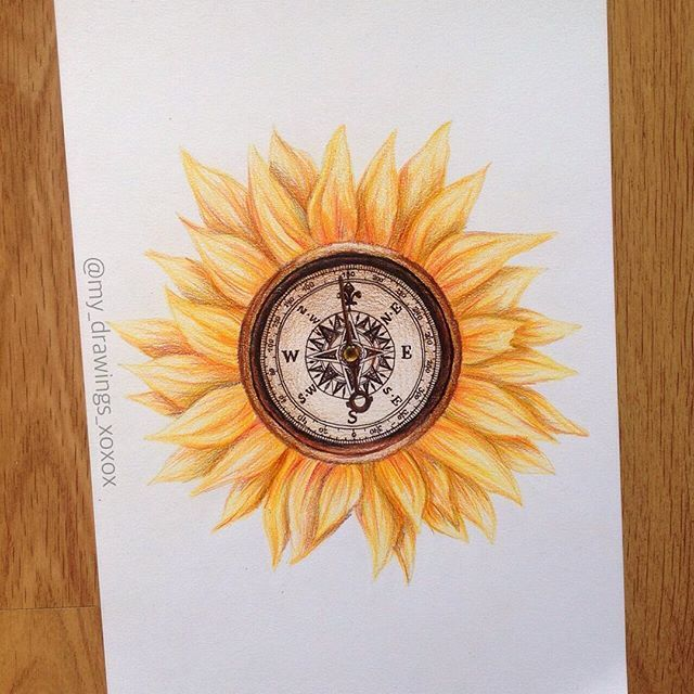 Compass sunflower idk why, just thought it looked cool QOTP: What's on your buckey list? AOTP: doing a safari in Africa, parasailing and skydiving (from a plane) comment what you think!