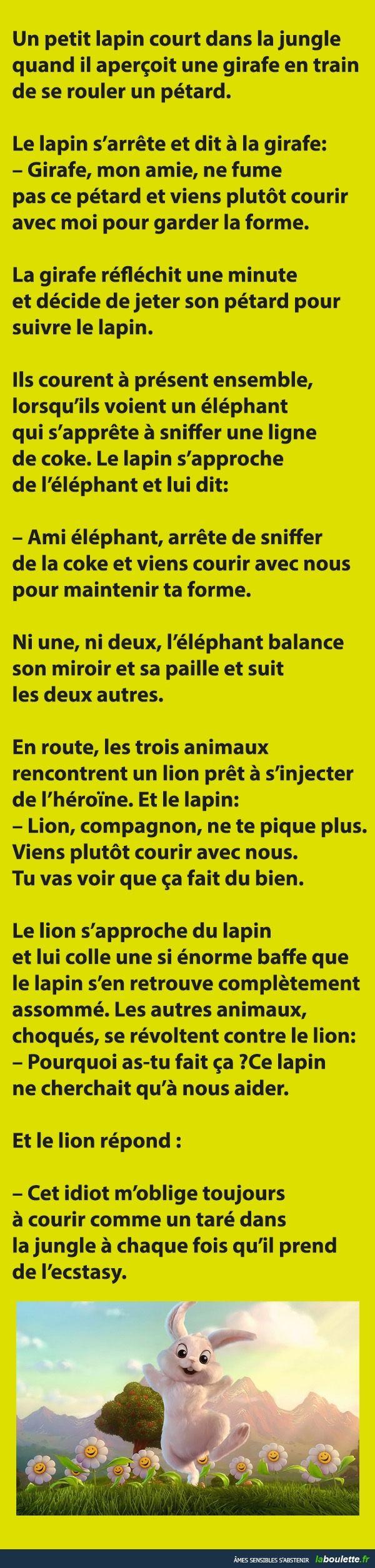 Un petit lapin court dans la jungle quand il aperçoit une girafe... | LABOULETTE.fr - Les meilleures images du net!