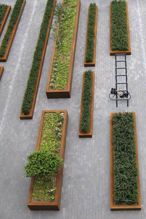 CorTen steel: raised beds of various sizes but all rectangular in form