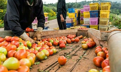 6 loving ways to a more #sustainable lifestyle, a potent list via Food Tank. http://t.co/qq1DvNBsCp