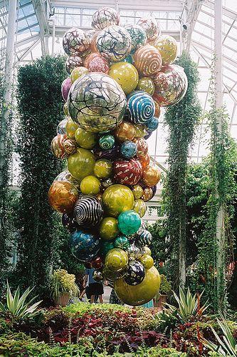Chiluly Installation at New York Botanical Garden