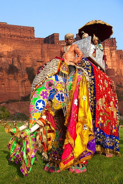 Elephant festival: They decorate them with fabrics and paint them with cheerful colors.
