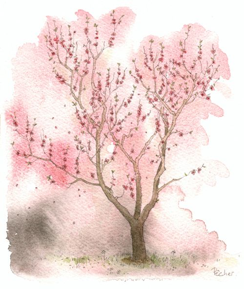 must try. could do a whole series of trees paintings for dorm?