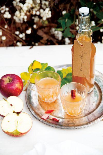 Årets stora skördefest närmar sig! Här är fem oemotståndliga recept på äppeldricka, vinägerchips, päronmarmelad, plommonchutney och körsbärssylt.