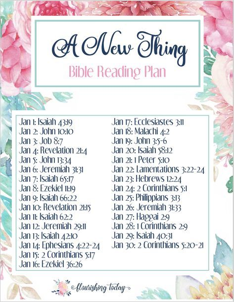 Are you looking for an intentional Bible reading plan for this year? Why not accomplish some #goals while reading the #Bible? Join us for a monthly reading plan that will accomplish both. #FreePrintable