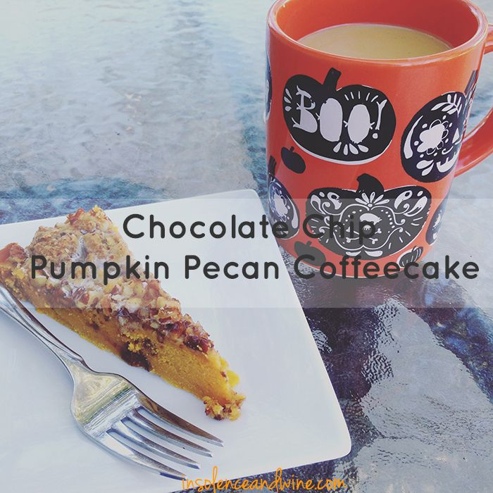 chocolate chip pumpkin pecan coffeecake insolence + wine