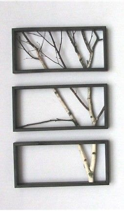 """Very cool..   Framed sections of a birch wood branch.. I can imagine doing this with any tree you like .. Hit michaels up for the shadowbox style frames or make your own.. Some paint, a carefully selected branch..  you have a 300 dollar look for under 50 bucks.."""