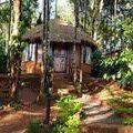 10 Pet Friendly Hotels in India: Greenex Farms, Kalpetta (Wayanad), Kerala