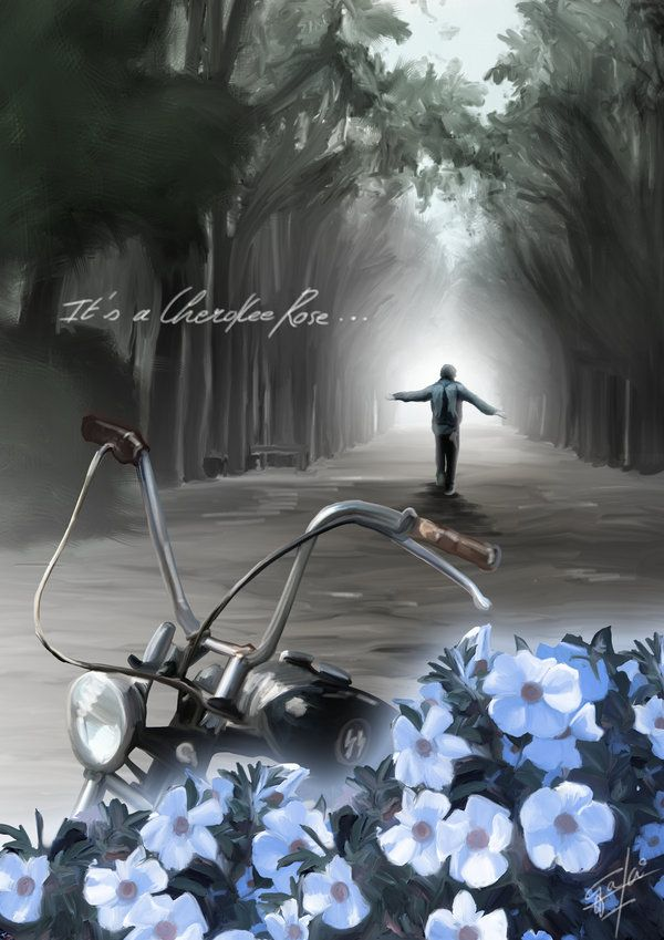 """""""It's a cherokee rose.."""" by *GakiRules on deviantART - """"Coasting on the wind beneath my wings, these arms I spread like a free angel... no longer broken."""""""