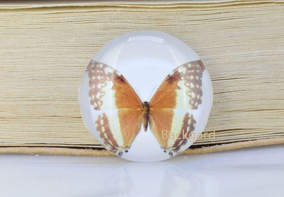 Glass Photo Cabochon Circle Brown Butterfly Handmade by backgard