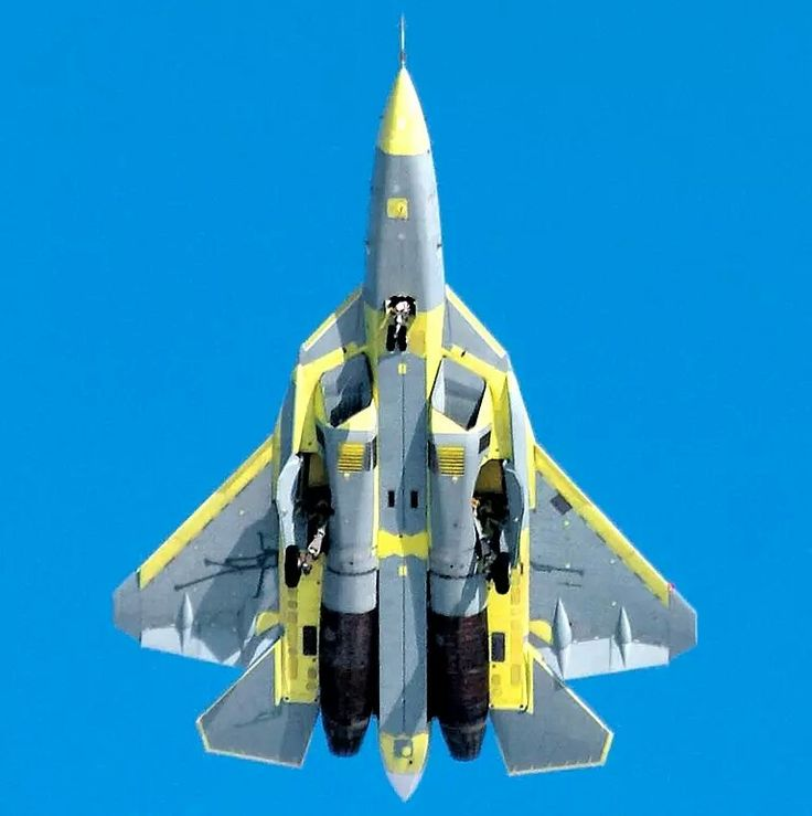 100%™ Sukhoi Su-57 | Russian Air Force