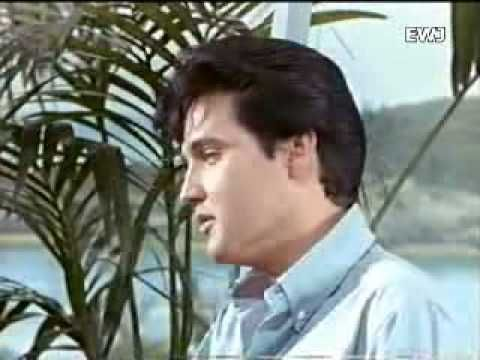 One of my favorite Elvis Presley songs - You don`t know me..............