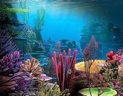 Image Result For Animated Coral Reef Wallpaper