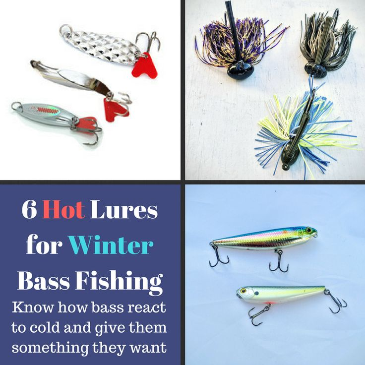 17 best images about bass fishing tips on pinterest bass for Winter bass fishing tips