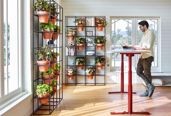 A space to unwind and be inspired, bring the outdoors into your tranquil office setting | Vertical Garden.