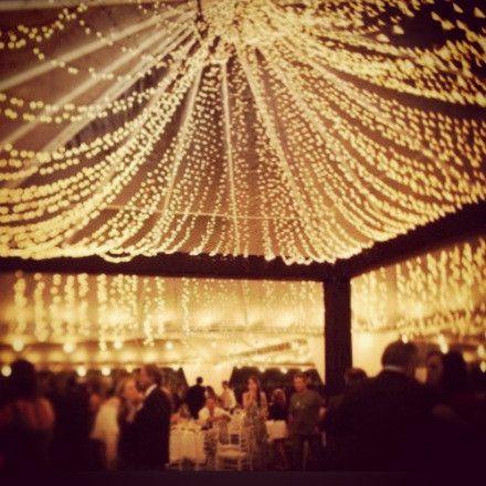 600 Bridal or Christmas Lights