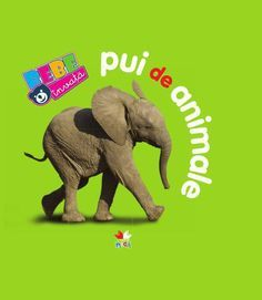 - Bebe invata: Pui de animale - - elefant.ro