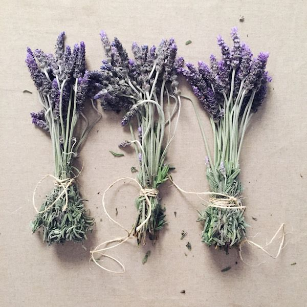 THE INDIGO CREW | Creative living with kids: Decorating with lavender - http://www.theindigocrew.com/2015/08/lovely-lavender.html