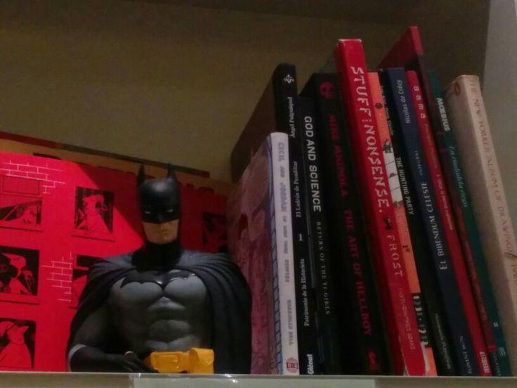 Batman vigila