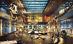 Groupon - Membership to Natural History Museum of Los Angeles County (Up to 57% Off). Four Options Available. in Los Angeles. Groupon deal price: $35.00