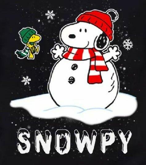 SNOOPY & WOODSTOCK~SNOWPY