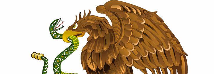 Emblema de fuerza y valentía para el pueblo mexica, esta ave rapaz es la orgullosa protagonista de nuestro escudo nacional. Te presentamos sus características e importancia en la historia de México.