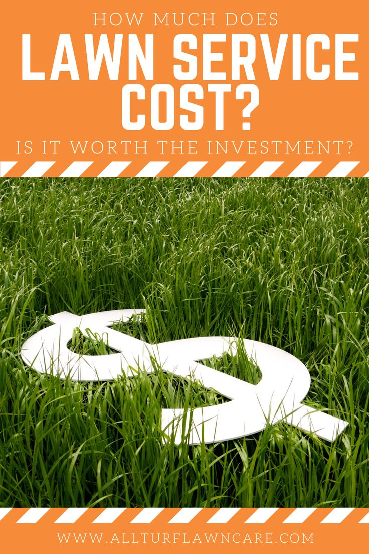 How Much Does Lawn Service Cost? in 2020 Lawn service