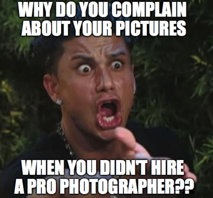 Best Photographer Memes Images On Pinterest Be Better Funny - 15 hilarious memes only book lovers will understand