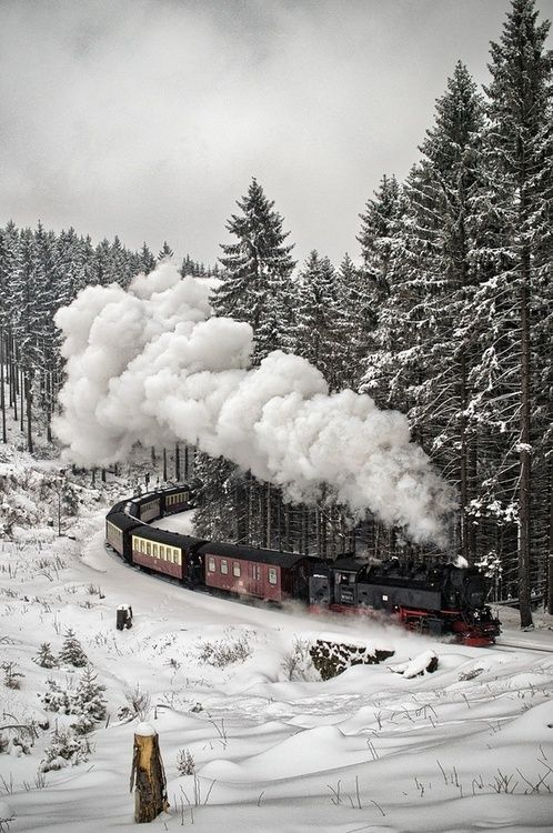 I Love train rides. I've only been on one. It was in the Smoky Mountains. It would be beautiful in the snow.
