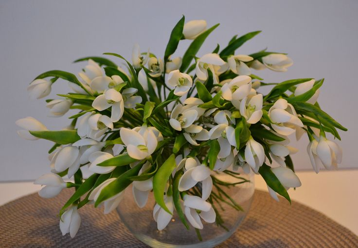 In this Bouquet there are More than 100 Flowers (to be exact 104 flowers). One Snowdrop has 3 petals. Each Flower is Handmade and Each Flower is Hand painted.  Size – 19 cm (7, 5 inches) high.  I use special clay that is also called cold porcelain. It makes flowers and leaves look absolutely realistic. Sometimes people can't even tell which flower is handmade and which is natural one :)  This bouquet is available for purchase!