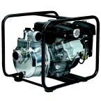 2 in. 4.3 HP Centrifugal Pump with Robin Engine