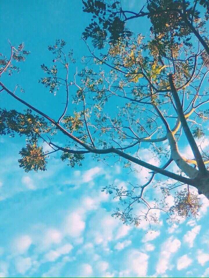 awan biru aesthetic awan biru aesthetic hnh nh bu