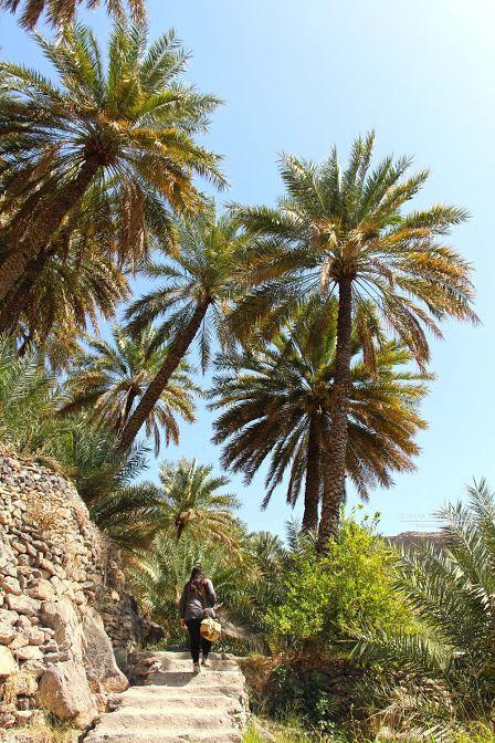 Os melhores treks em Omã | Trilhos e percursos pedestres