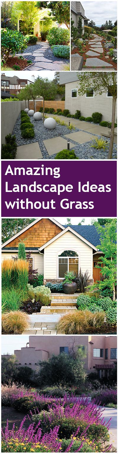 HOW TO: landscape without having a lawn.  Amazing Landscape Ideas without Grass