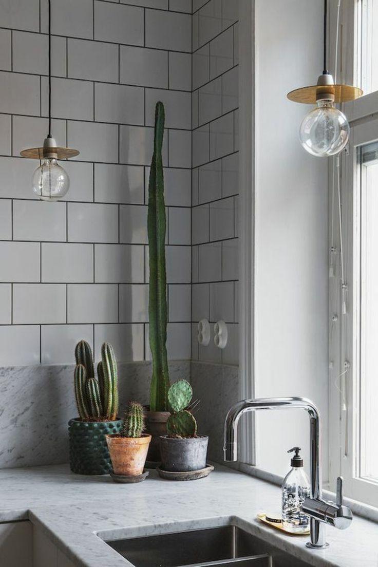 die 25 besten pflegeleichte zimmerpflanzen ideen auf. Black Bedroom Furniture Sets. Home Design Ideas