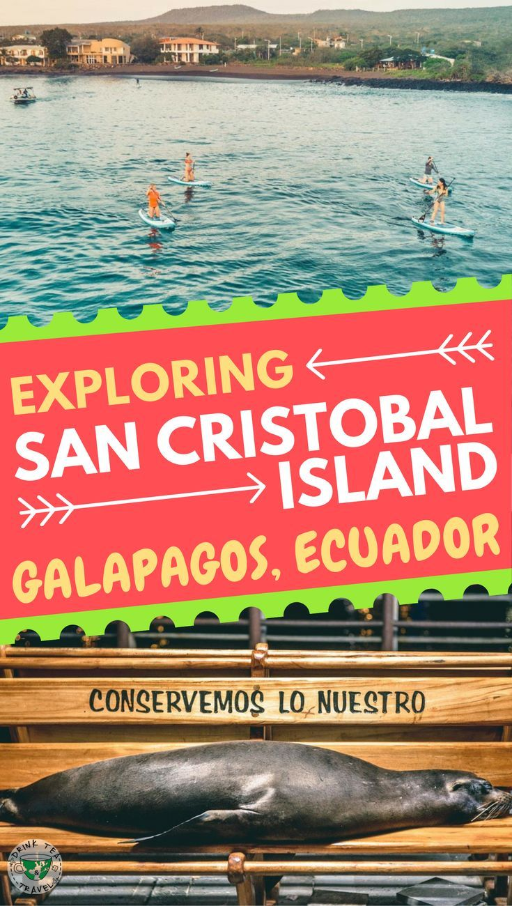 Planning a trip to the Galapagos Islands? San Cristobal Island must be on your itinerary. Check out this video from San Cristobal Island, Ecuador and see the sea lions,