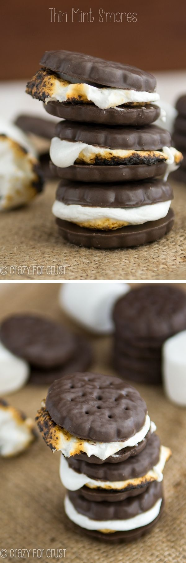 Thin Mint S'mores | crazyforcrust.com | The easiest recipe ever! @Ian Hahn for Crust: Crazyforcrust With, Girl Scouts Cookies, Mint Smores, Easiest Recipe, Cookies Smores, Food, Thin Mints, Mint S Mores