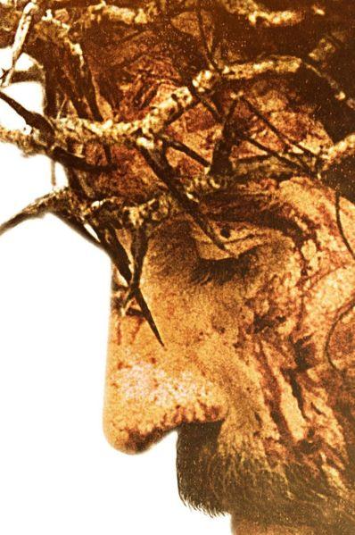 Passion Christi Stream Deutsch