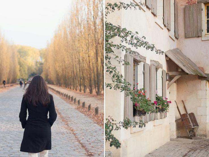 paris, versailles gardens, autumn