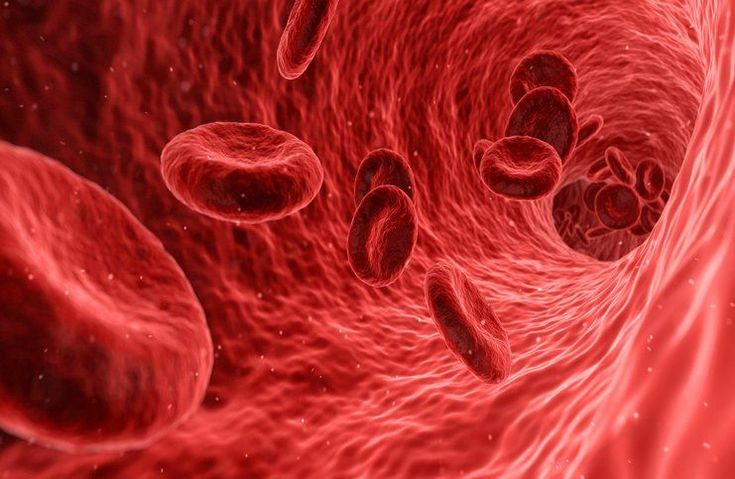 Find out what are the symptoms, causes, prevention methods, and spiritual meaning of sepsis (septicemia), a serious bloodstream infection.