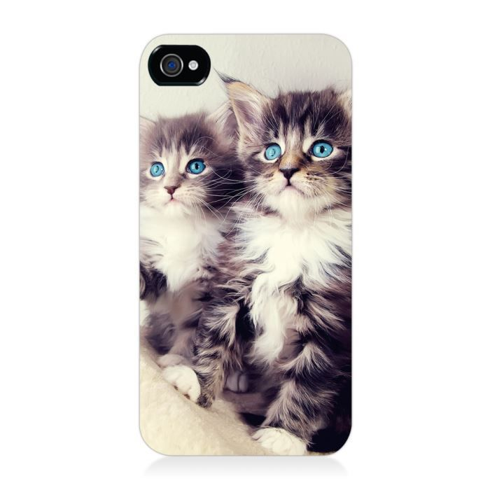 Coque rigide chats birmans -