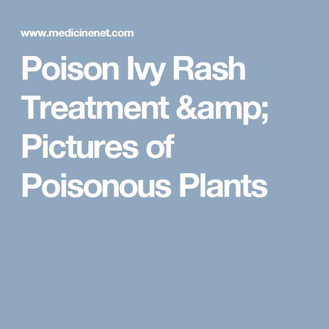 Poison Ivy Rash Treatment & Pictures of Poisonous Plants