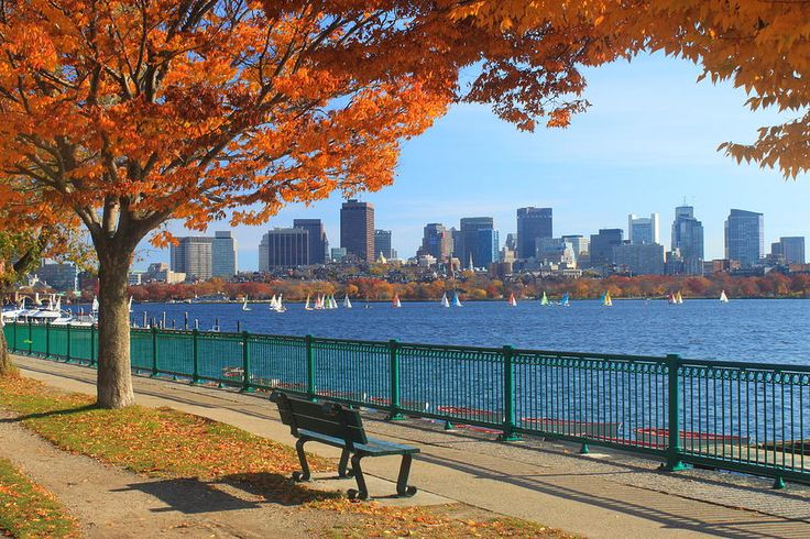 Boston Charles River in Autumn Photograph  - Boston Charles River in Autumn Fine Art Print