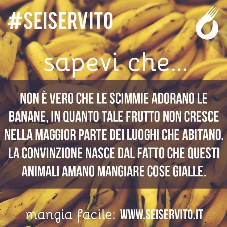 Non è vero che le scimmie adorano le banane... #SeiServito #MangiaFacile www.seiservito.it