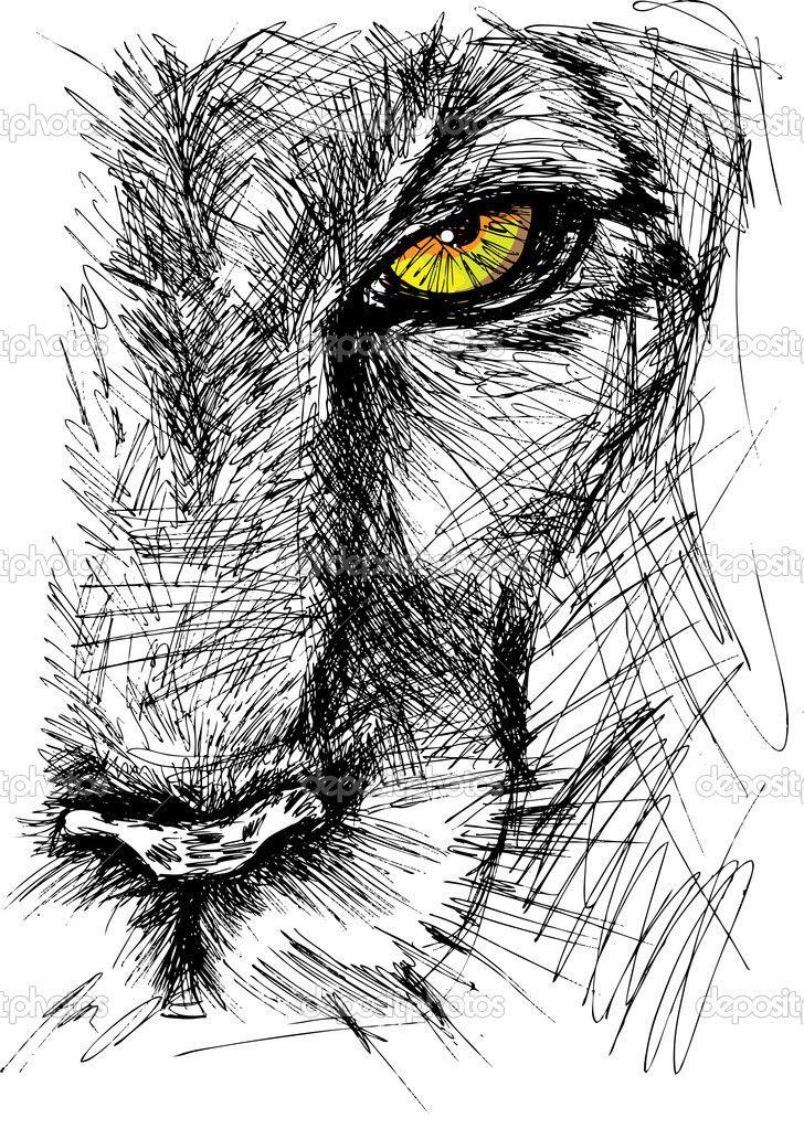 Bosquejo dibujado mano de León mirando fijamente a la cámara. ilustración vectorial
